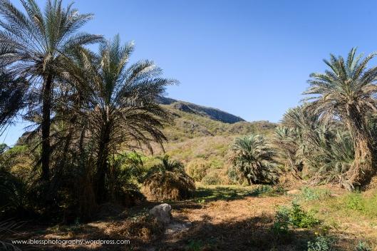 Khor Kharfot Salalah Oman