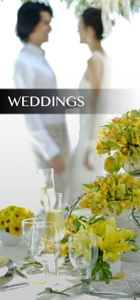 iblessphotography weddings